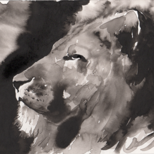 Lion in Ink